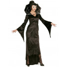 Costume Carnevale donna travestimento Halloween spiderella *21812 | Effettoparty.com
