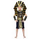 Costume Carnevale faraone egizio Ramses travestimento bambino 05243 effettoparty